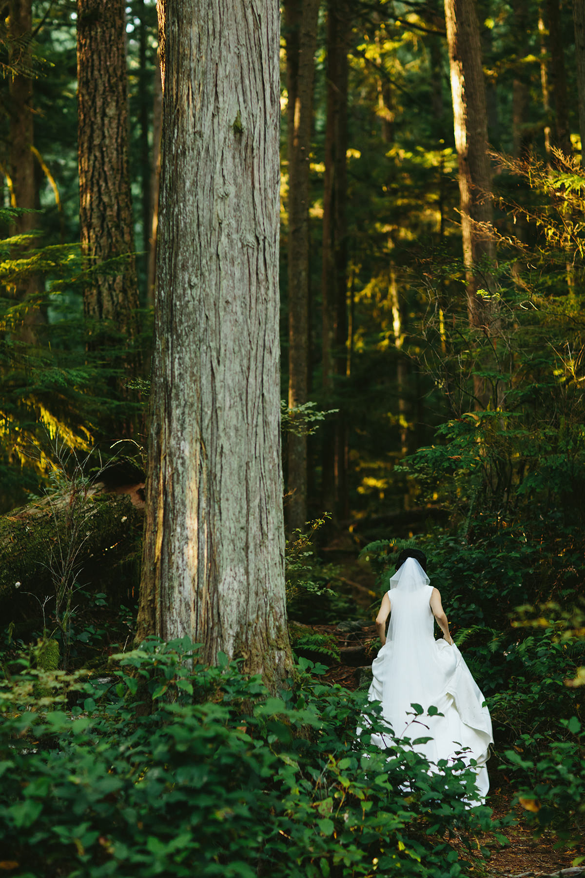 bride in a rainforest near Vancouver Canada www.lucida-photography.com